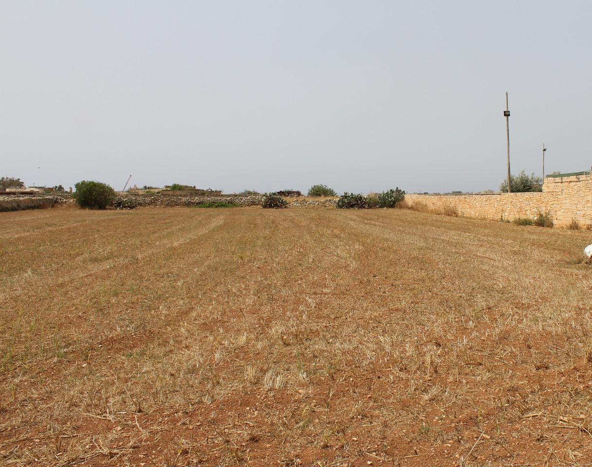 Mqabba Land P000189170