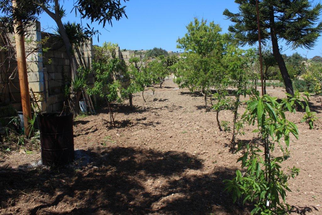 Rabat Land P000196835