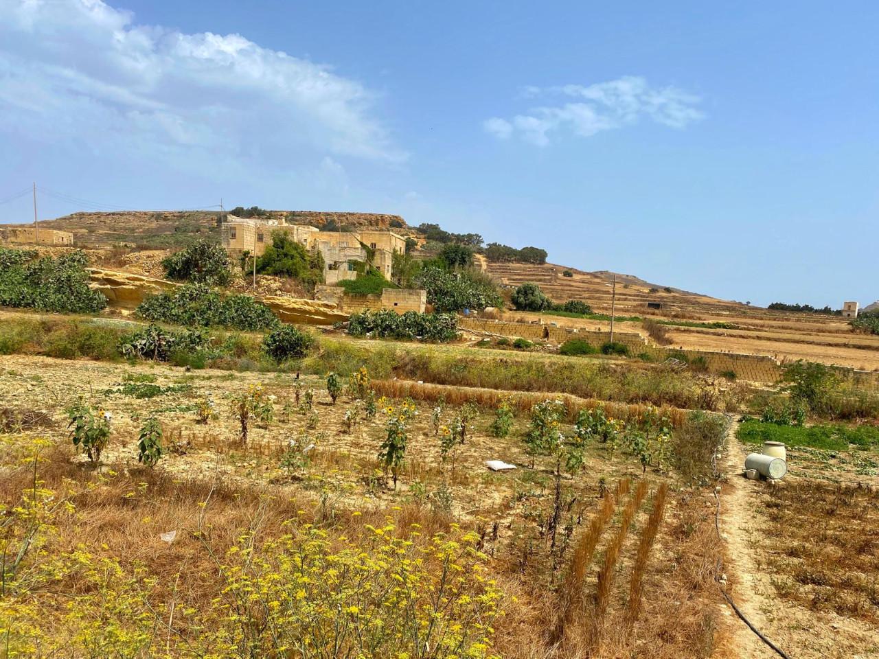 Gozo Ir-Rabat Penthouse P000229769